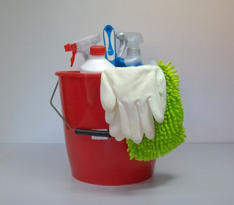 What Is Vegan Cleaning?