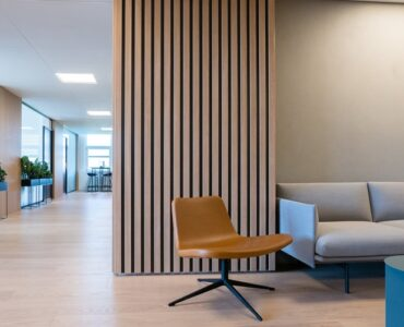 featured image - Timber Feature Walls Everything You Need to Know