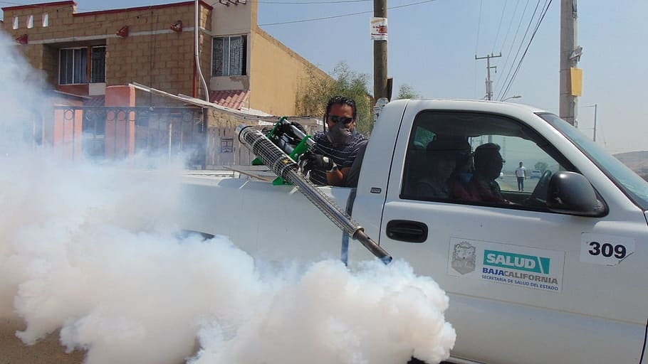 5 Tips for Choosing the Right Local Pest Control Services for You