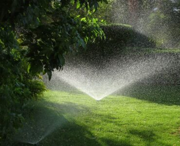 featured image - The Right Sprinkler System Will Improve Most Lawns