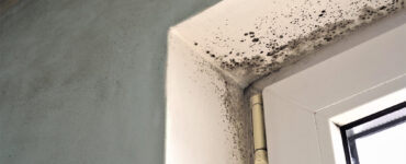 featured image - Three Reasons You Have Condensation in Your Home