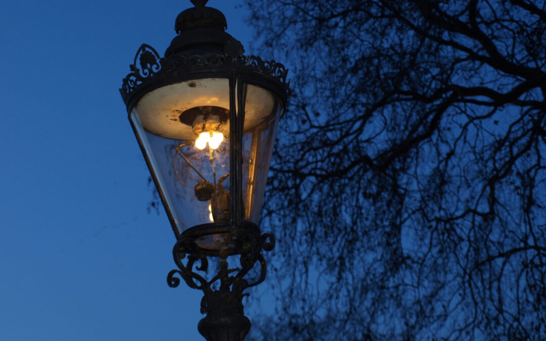 Light for Your Lawn: 7 Types of Outdoor Lights You Should Know About