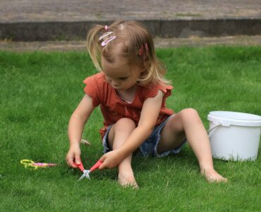featured image - Most Useful Tips for Artificial Grass Maintenance
